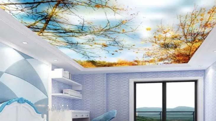 Расписной натяжной потолок